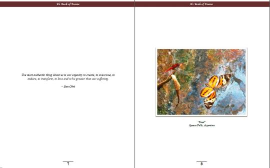 Brittney Johnson's eBook